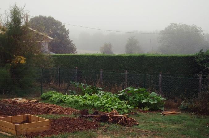 jardin-brume-brouillard